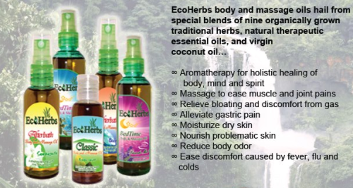 EcoWEB, Inc.